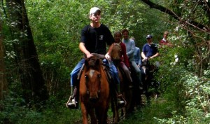 horse riding near plettenberg bay