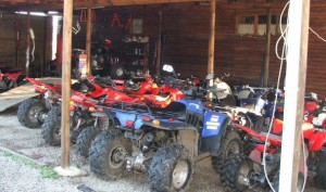 quad bikes at southern comfort ranch